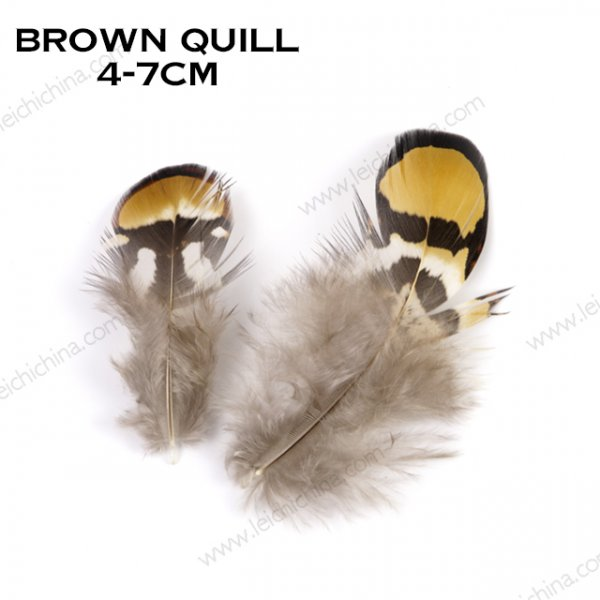 brown quill