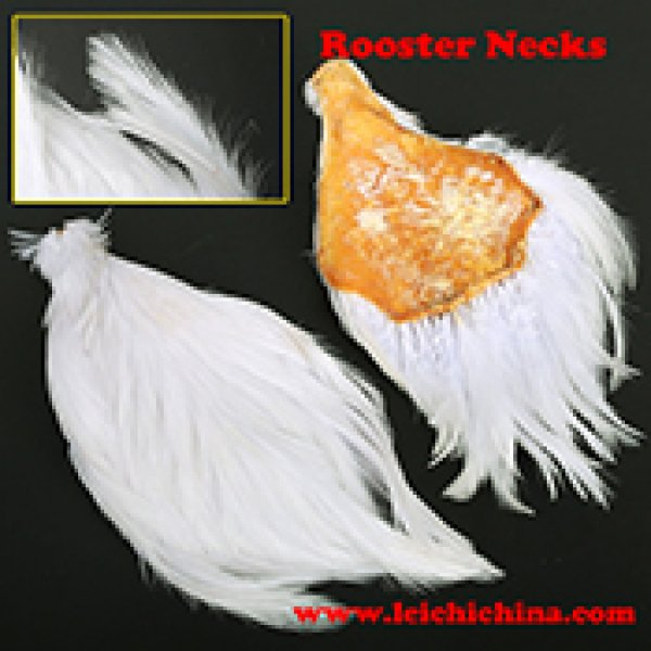 Fly tying Chinese rooster necks