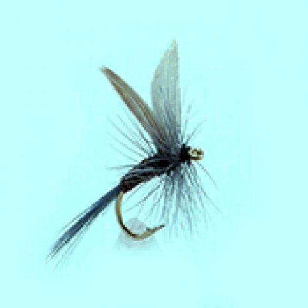 Dry fly Blue Quill