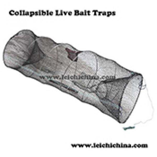 Collapsible Live Bait Traps