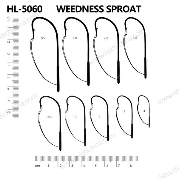 HL-5060